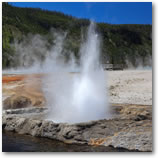 Yellowstone and Grand Teton National Parks Tours