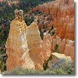 Zion, Bryce, Capital Reef Tours