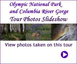 Olympic National Park and Columbia River Gorge tour photos