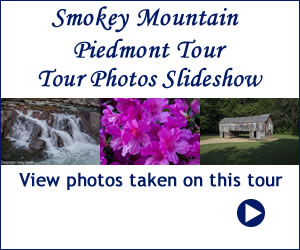 Smokey Mountain Tour Gallery