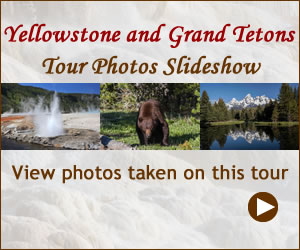 Yellowstone Grand Teton Tour Photos